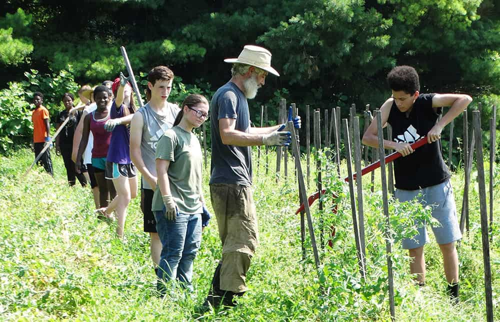 Trellis For Tomorrow Program: Food For Thought