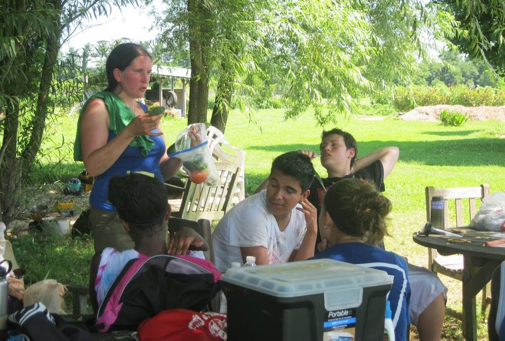 Summer Internship with Food for All
